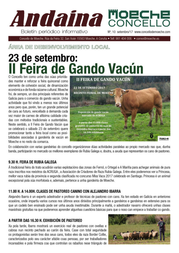 Novo número do boletín informativo Andaina