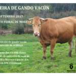 II FEIRA DO GANDO VACÚN