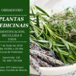 OBRADOIRO. PLANTAS MEDICINAIS. Venres 7 de Xuño