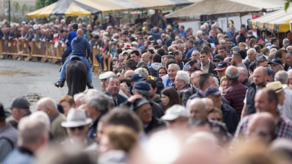 Moeche non celebrará a Feira do Cabalo por segundo ano